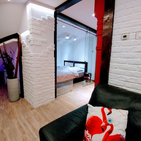 Cozy Bright Apartment w/ free WiFi