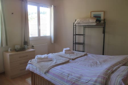 Riverside apartment - recently redecorated - Pionnat - Appartement