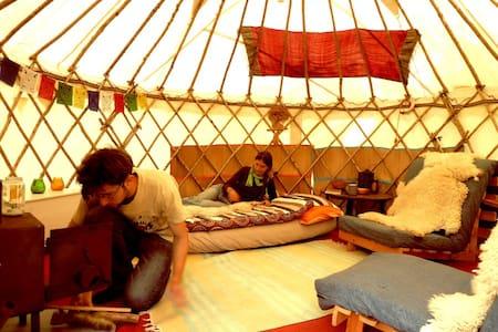 Yurt 1 (Mongolian Tent) at Crann Og Eco Farm Stay - Γκάλγουεϊ