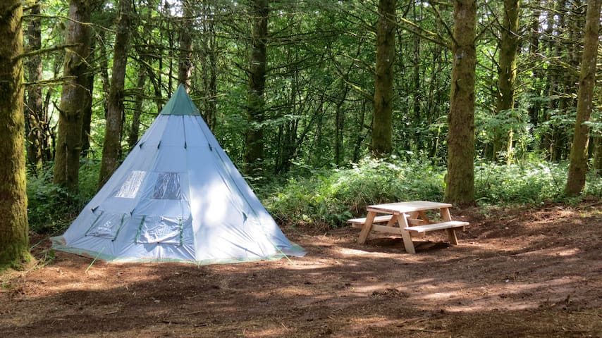 PRIVATE CAMPING W/ TEPEE TENT ON 14 AC.