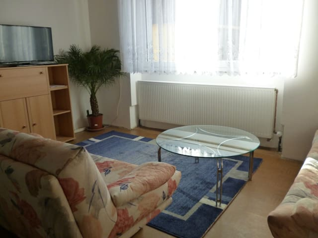 Comfortable charming near Nuernberg - Schnaittach - Appartement