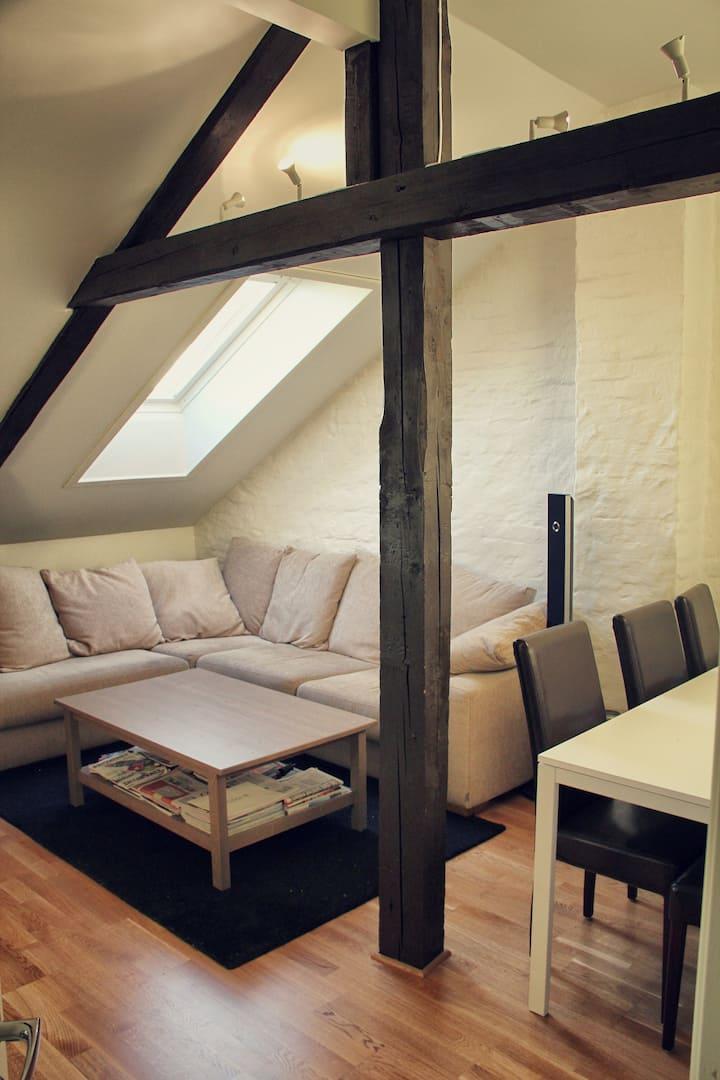 Cozy central - Grünerløkka