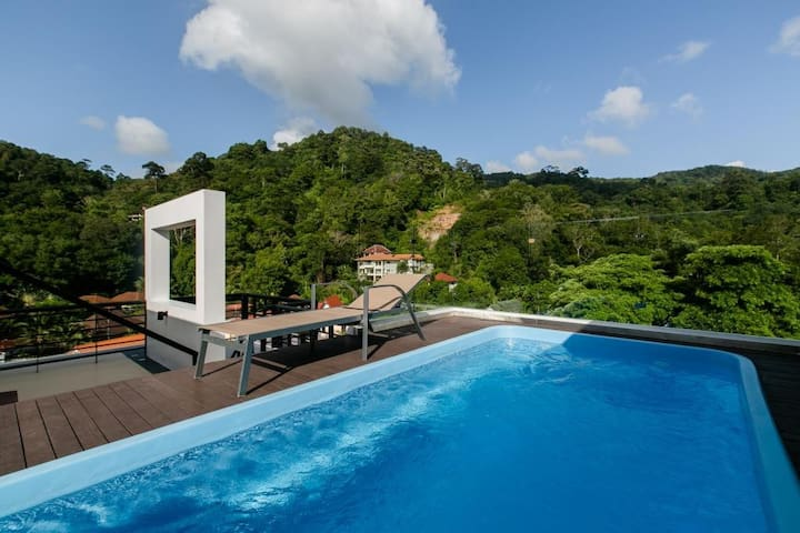 Mountain View penthouse / private swimming pool