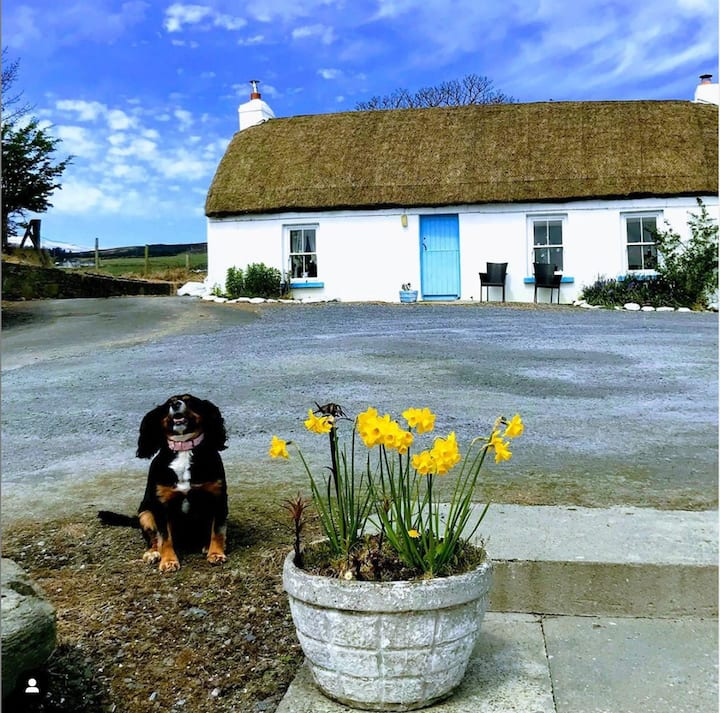 Wee Blue Cottage on the Wild Atlantic Way