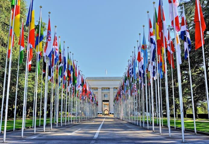 Chambre dans un apprtement 5 minutes Nations Unies