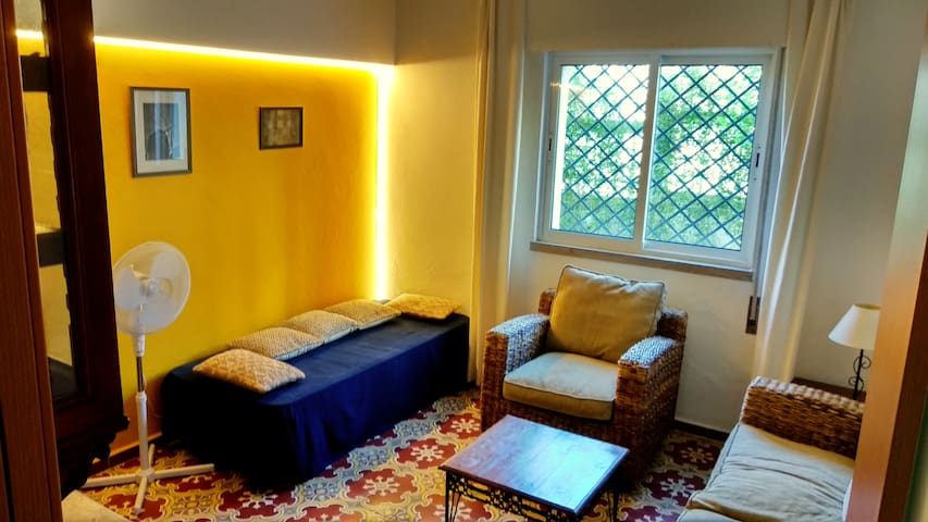Library: Spacious room with single bed/sofa, sofa, armchair, big TV and equipped library