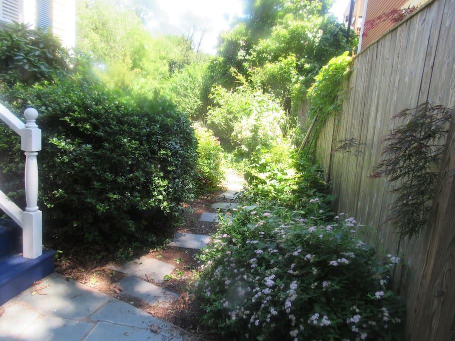 walkway to side yard