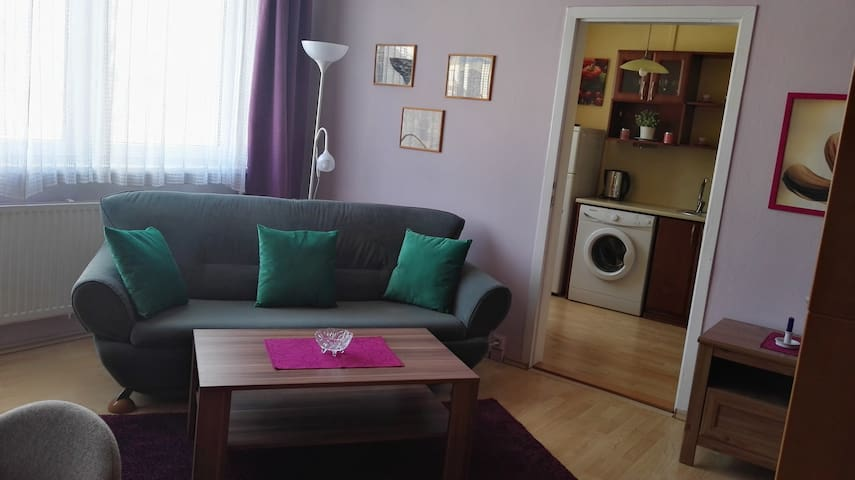 Simple but clean, flat 2+1 Ostrava Sport ARENA - Ostrava - Apartment