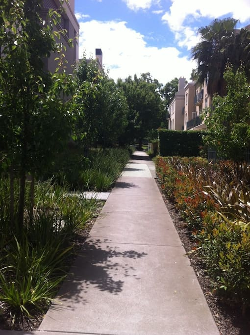 Pathway leading to apartment entrance