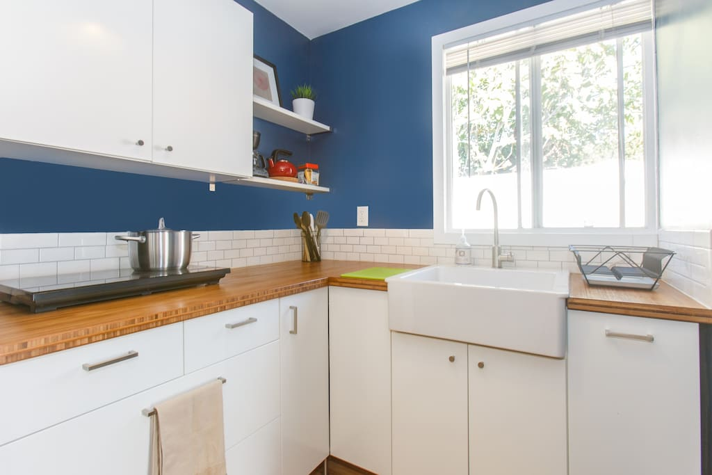 Newly renovated kitchen with induction cooktop, microwave, fridge and large sink