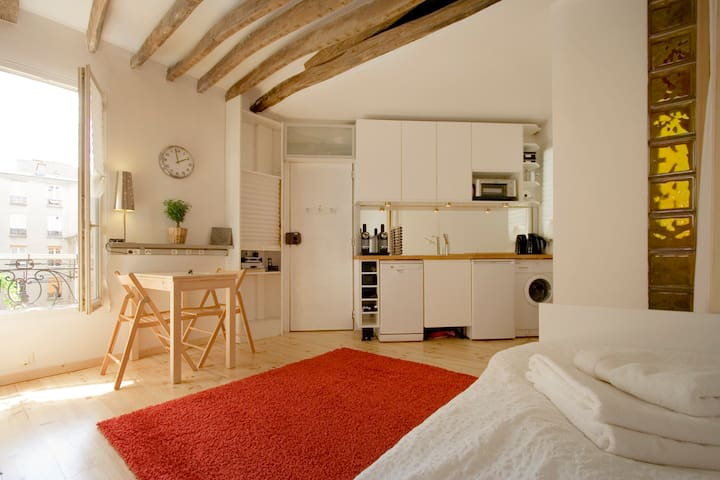 Swishy Cosy Paris Pad