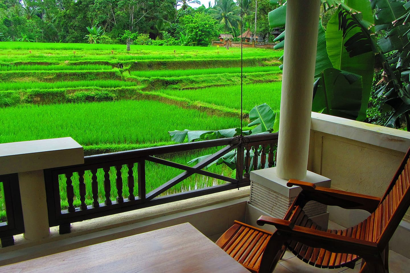 Amazing view of the rice paddy while you relax on the breezy balcony.