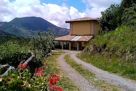Il Ghiro Bed and breakfast - Mormanno