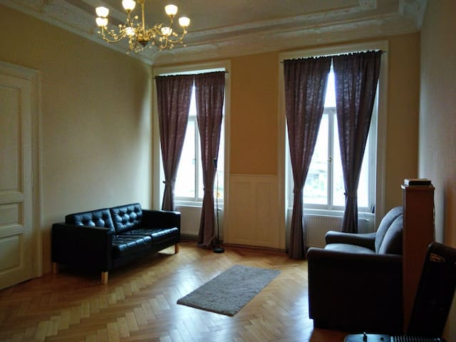 Private Bedroom + Spacious Hall in Central Prague.