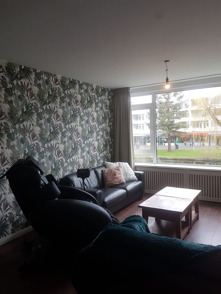 New junglish apartment, masagechair,  next to bus