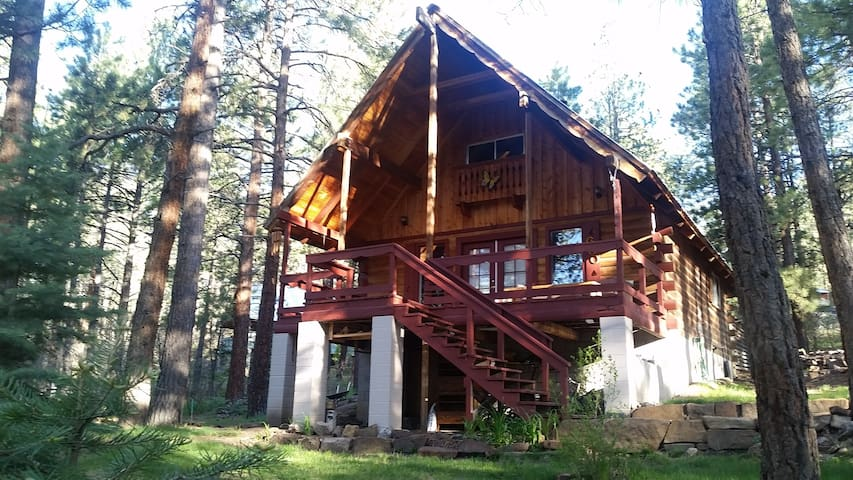 Mountain Cabin close to Durango, lakes and trails