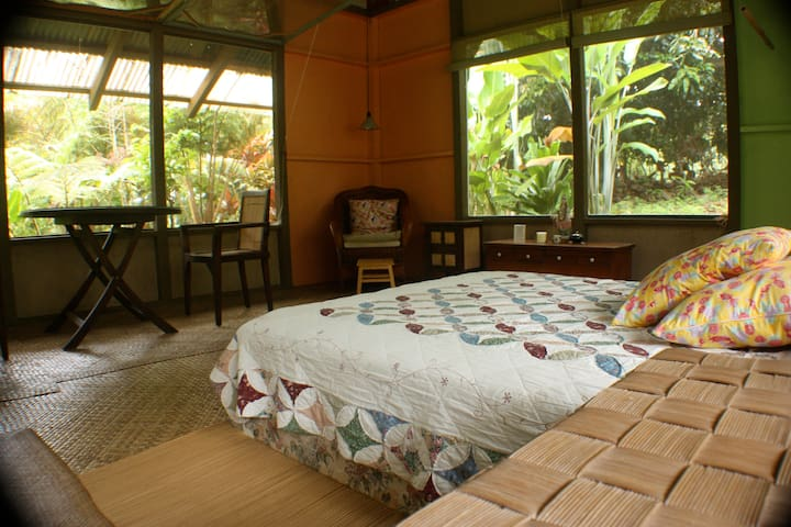 Mango Tree Cottage, nestled in the rain forest