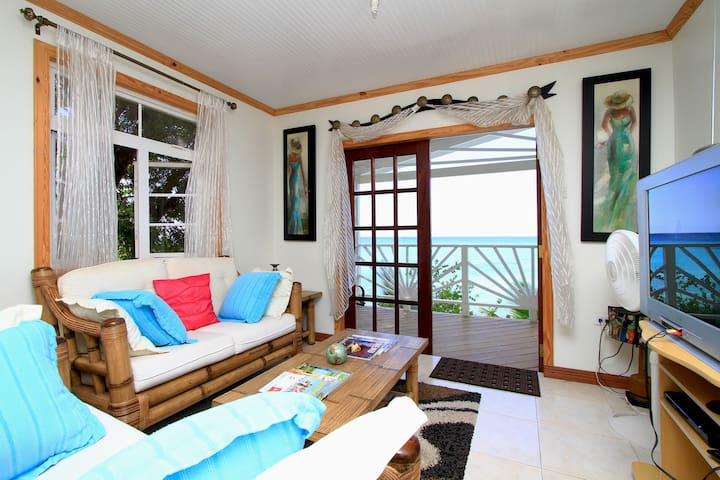 Plombagine Cottage- Beachfront, Wifi, Cable TV, AC