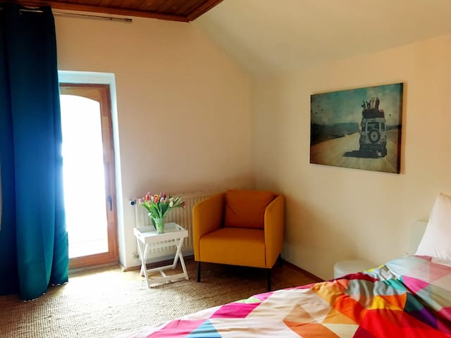 Bright and Colourful Room on an Alpaca Farm. QE