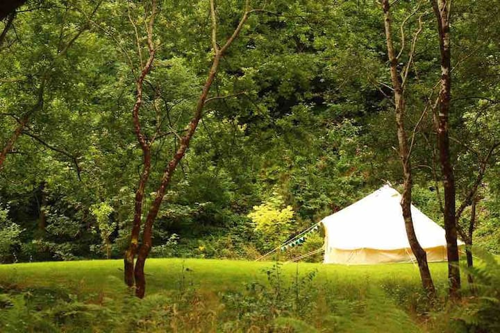 Exclusive Tent pitch at The Old Goginan Mine Site
