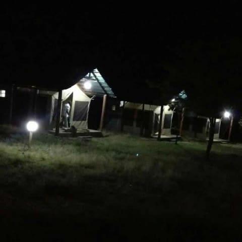 Masaimara Springs Camp_Third Tent