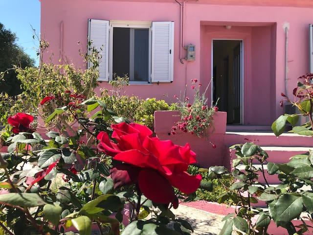 Sofi's House