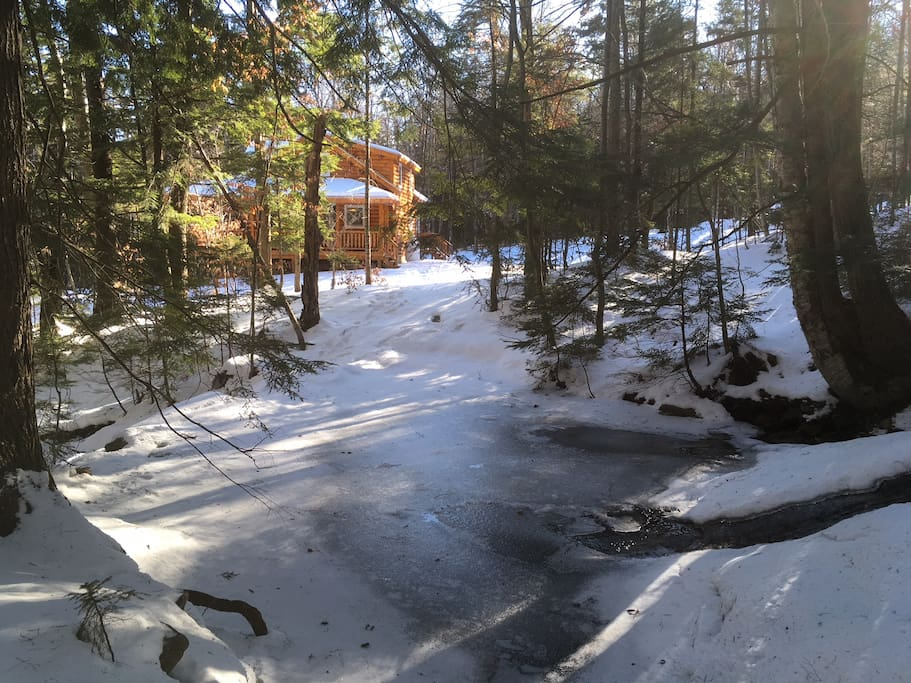 Stream Pool in winter.