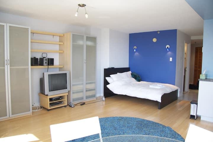 Cozy condo suite, downtown Montreal