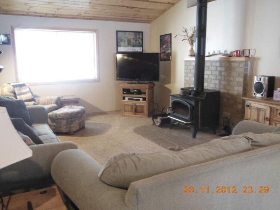 Living room features wood stove & sleeper sofa.