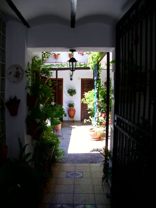 Apt charming typical patio 3 pers apartments for rent for Sofa ideal cordoba
