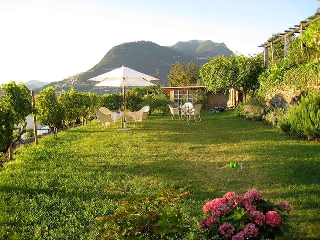 Casa Antica - Quiet and Beautiful - Lugano - Дом