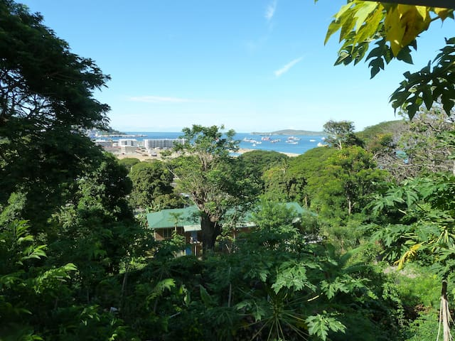 PNG House with Harbour views  - Port Moresby - Rumah