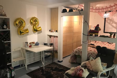 Light-flooded studio apartment in central setting - Vallendar