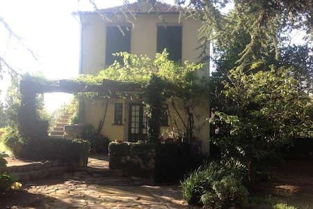 Room in this great house/garden -2 - Matosinhos