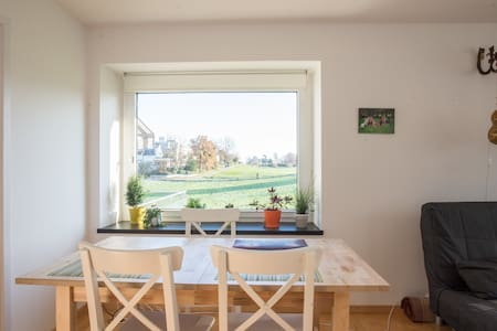 Cozy flat with a big terrace in a beautiful area - Zürich - Wohnung