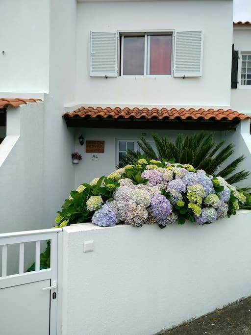 Private front entrance to house, with beautiful small garden with hydrangeas and Sica Palm tree and garden bench.