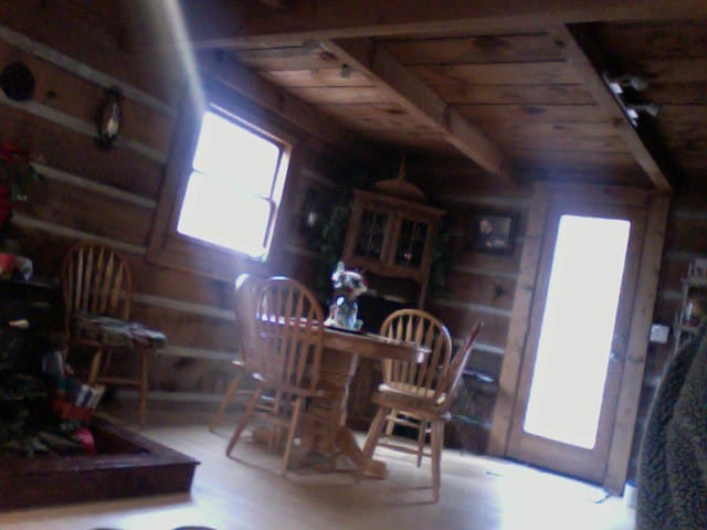 Cozy Downstairs Room in Log Cabin