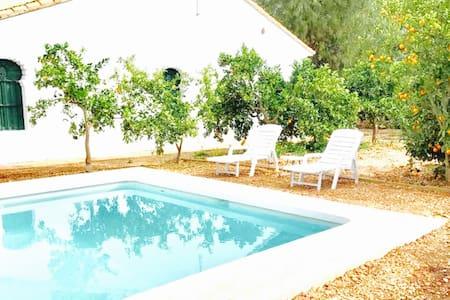 Luxurious Mediterranean Villa with private pool - Ondara - Dom