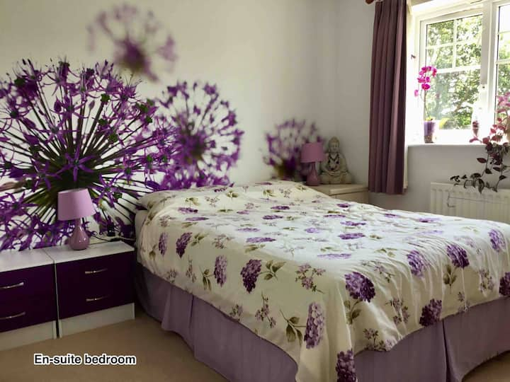 En-suite room in village - Dogs/small pets welcome