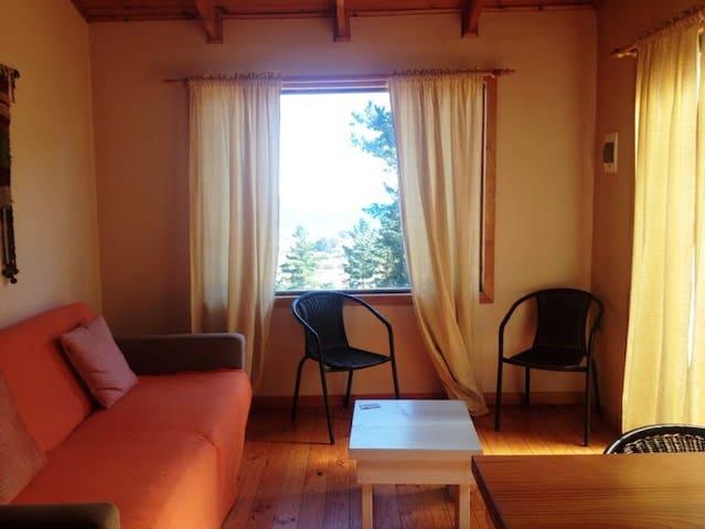Cabañas Buena Vista/Cabaña Tococalma - Pichilemu - Apartamento