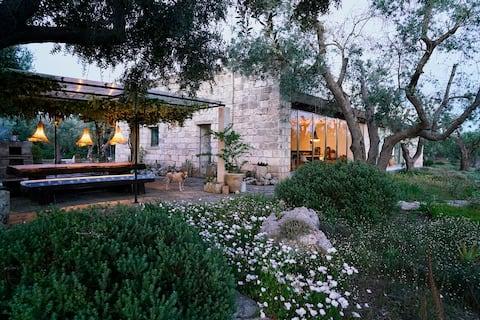 Deilig hus i privat olivenlund