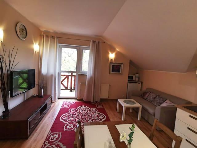 Apartament EverySky Nad Łomnicą 1E/09