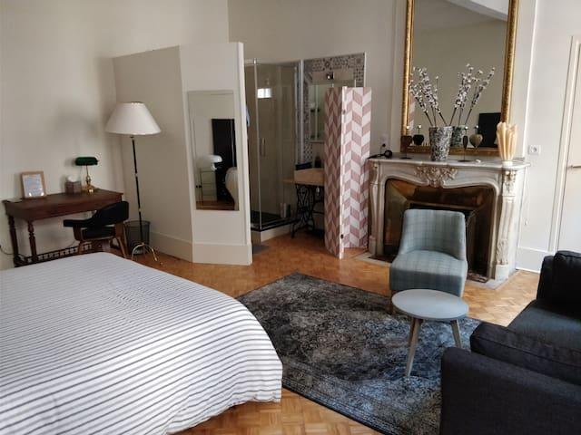 Grande chambre dans  un hôtel particulier