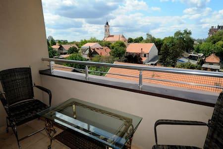 Lovely flat with a sunny balcony  - Belgrado