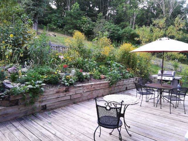 Den of Zen: relaxing, artsy sustainable homestead