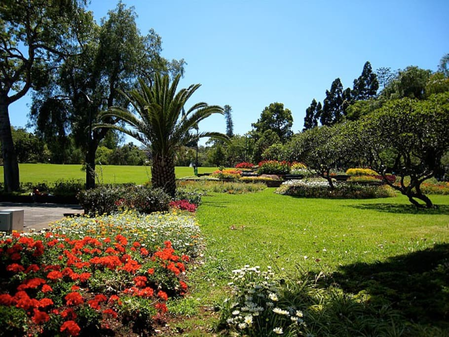 One of the beautiful Parks in Funchal