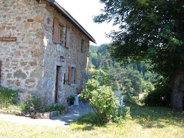 Chambon sur Lignon - landelijk gelegen - Le Chambon-sur-Lignon - Rumah liburan