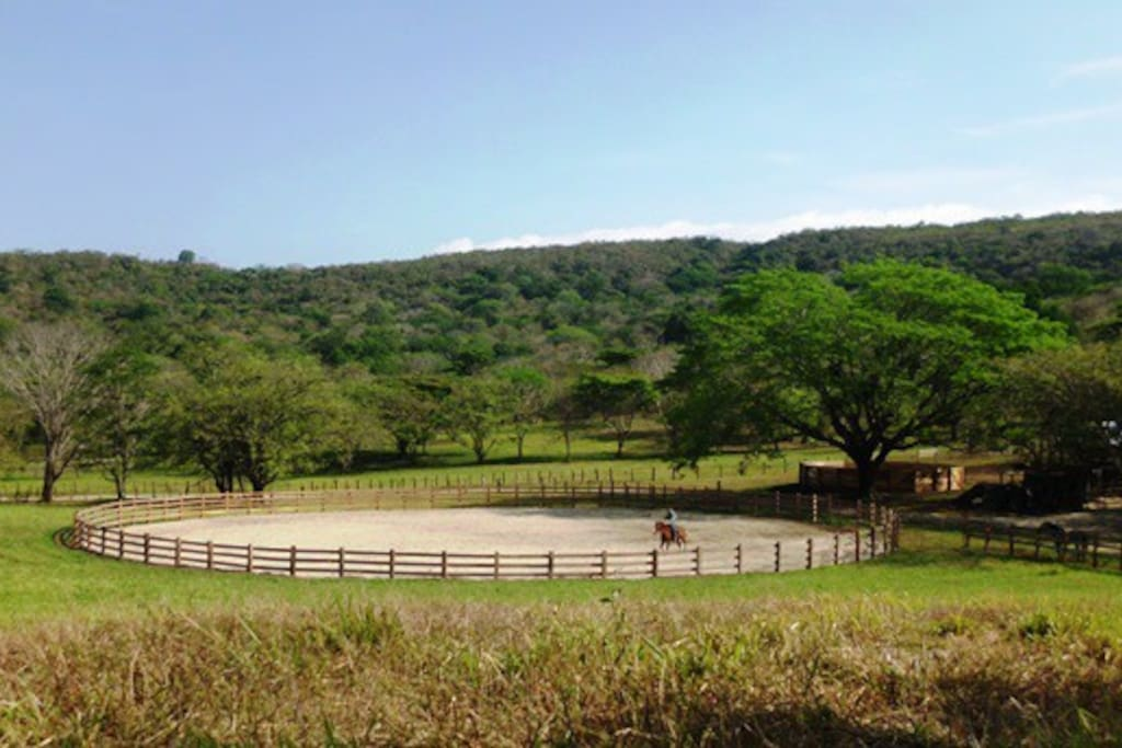Trail riding and access to Las Imagenes Equestrian Center.