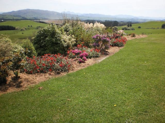 The rhododendron garden