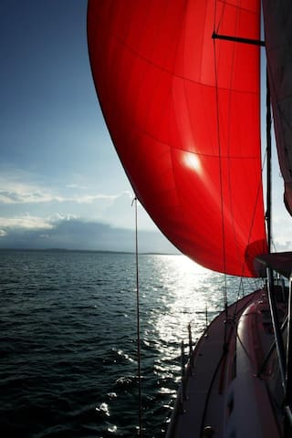Sailing Bocas + overnight, private yacht 49 feet - Bocas del Toro Province